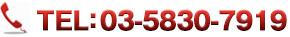 TEL:03-3841-7932
